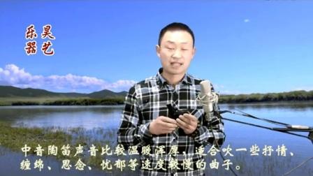12孔陶笛教程草鱼教学-播单-优酷视频如何用阀竿钓技巧图片