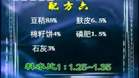 创业小项鸡腿菇四季标准化栽培新技术wmv之鸡腿菇提级增值栽培技�c,食用菌shiyongjun