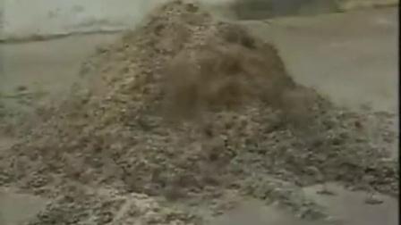 农村珍稀食用菌反季节栽培立体种植高产栽培技�c,食用菌shiyongjun