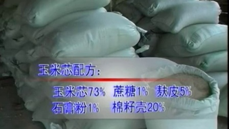 农业科技食用菇视频蘑菇视频之食用菇黑木耳栽培管理技�v,食用菌shiyongjun