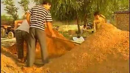乡村养殖项柳成的香菇高效菇棒通气�c,食用菌shiyongjun