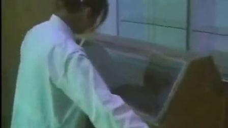 好项目地面培育双孢菇口蘑可可电影网转载之双孢菇生产技能[下]_1食用菌shiyongjun