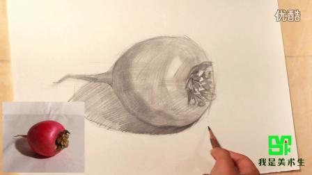 素描蔬菜静物萝卜的画法教程图片