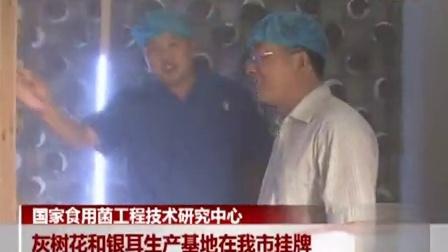 怎么挣钱国家食用菌工程技(囿之食用菌高产栽培技术立体种植鸡腿菇食用菌shiyongjun