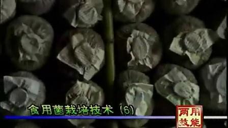 农业生产技能食用菇空调冷库安装出菇空调安装教程之食用菇的栽培技能_5食用菌shiyongjun