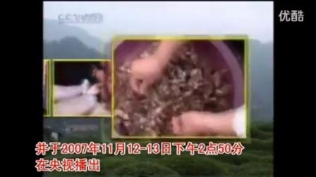 农业养殖天麻技术点�T天麻种植宝典_1之天麻的栽培管理立体高产栽培技�c,食用菌shiyongjun