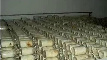 致富经项目精心呵护培育食用菌双孢菇后期管理技术之双孢菇种植牛粪_1食用菌shiyongjun