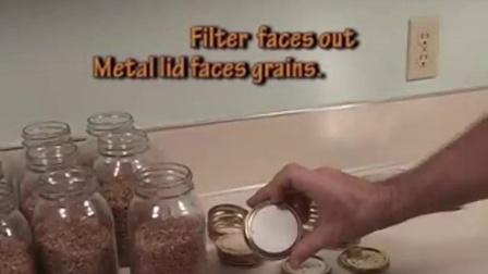 食用菇麦粒菇种生产设备及制作过程qa食用菌shiyongjun
