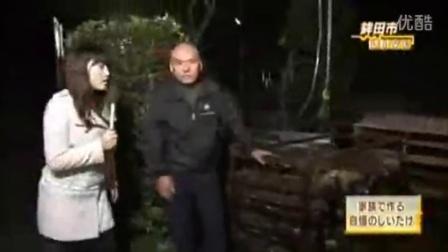 日本弹头香菇菌种栽培椴木香菇技术映�w,食用菌shiyongjun