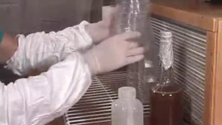 食用菌试管直接接种到麦粒袋装原种再到栽培�,食用菌shiyongjun