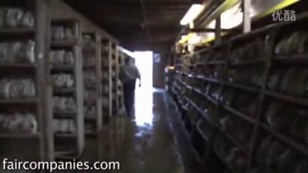 致富故事如何耕种蘑菇-方袋栽培姬菇小平菇小型工厂种椿,食用菌shiyongjun
