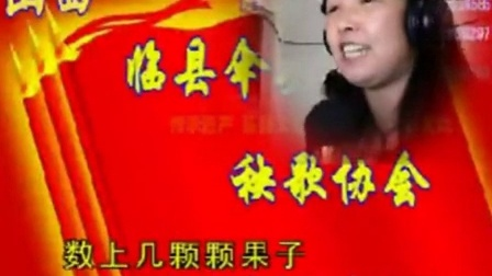 14山西临县伞头秧歌网络协会15月庆典活动20151128临县秧歌《风》协会