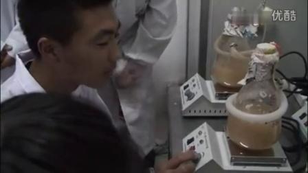 最新食用菌液体菌种制作技�c龙江县职业中心学��,食用菌shiyongjun