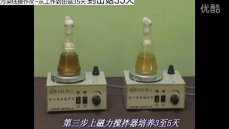致富故事食用菌磁力搅拌器操作视频qa食用菌shiyongjun