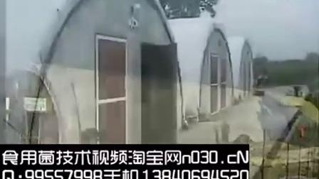致富创业国外新型空调菇棚建设设计技术让菇农圆了致富��,食用菌shiyongjun
