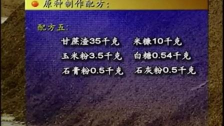 农业科技2015食用菌技�c杏鲍菇立体种植高产栽培技�c,食用菌shiyongjun