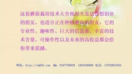 乡镇创业种蘑菇最新技�c015年蘑菇白灵菇鸡腿菇香菇竹荪栽培技�c,食用菌shiyongjun