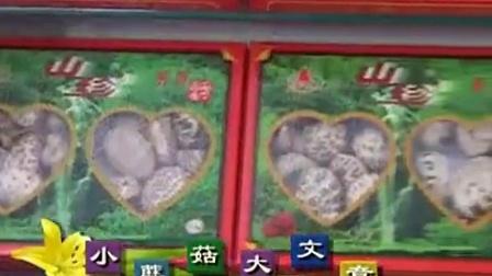 创富好项目食用菇生产模式工厂化立体高产培养栽培培育技�v,食用菌shiyongjun