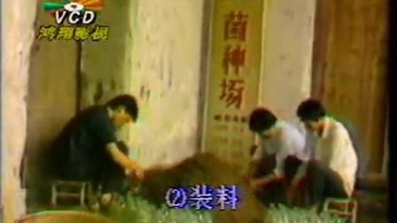 创富小项目食用菇立体培育高产栽培技能培训之食用菇技�v,食用菌shiyongjun