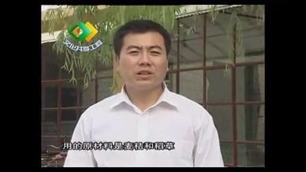 农业培育项目巧用棉籽壳培育双孢菇高产栽培新技�v,食用菌shiyongjun