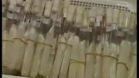 金福菇优质高效种植高产培养栽培新技术_标清食用菌shiyongjun
