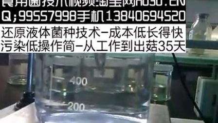 养殖培训自制龙卷风磁力搅拌器优质高效培养视频_标清2015126104428食用菌shiyongjun