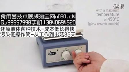 英国Bibby US152 加热磁力搅拌器液体菌种培养机_标清食用菌shiyongjun