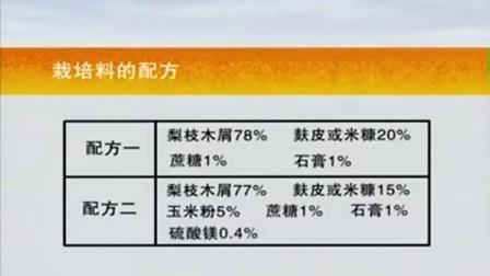利用废弃梨枝栽培香菇工厂化立体优质高效种植新技�c,食用菌shiyongjun