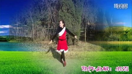 巩义宋陵广场舞 喜气洋洋过大年 正反面 舞蹈动作分解 口令讲解 广场舞教学视频 歌手:陈玉建