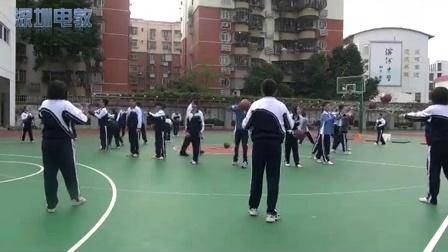 《篮球双手胸前传接球》教学课例(八年级体育,罗湖中学: 向阳)