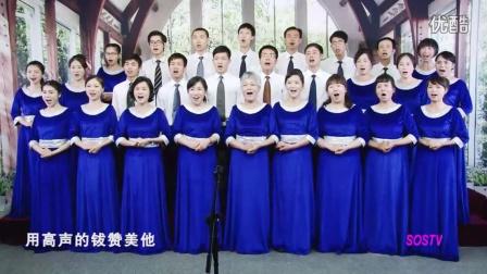 诗歌339首.诗篇150篇 基督教歌曲耶稣颂赞赞美诗经典精选古诗圣乐福