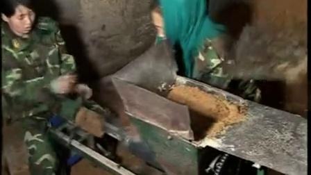猴头菇培育工厂化立体优质高效种植新技�c,食用菌shiyongjun