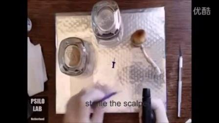 农业致富如何制作锡纸孢子卿为孢子注射器液体菌种制作做准�B国外技�c40p食用菌shiyongjun