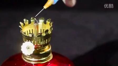 农业项目蘑菇孢子打印-圆盒母种制作-原种制作接种-栽培种接�国外技�c60p食用菌shiyongjun