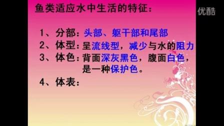 深圳市网络课堂初中生物同步课堂微课教学课例(七年级生物)
