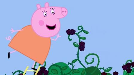 小猪佩奇 第四季 26