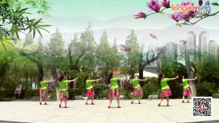 糖豆广场舞蹈视频大全2015妻子的双手