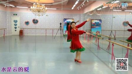 糖豆广场舞蹈视频大全2015云在飞