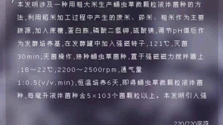 用粗大米生产蛹虫草微颗粒食用菌液体菌种的方法2016-1-14 9-01-39食用菌shiyongjun