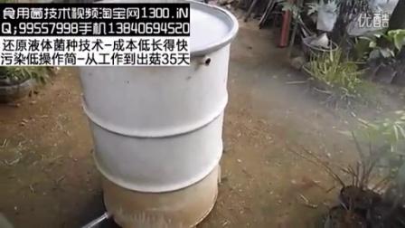 草菇蘑菇种植和草菇稻草秸秆菌种杀菌器灭菌桶锅-360p食用菌shiyongjun
