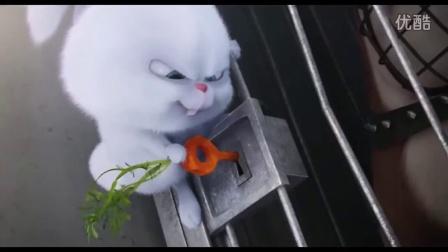 雪球兔子动态表情包分享展示