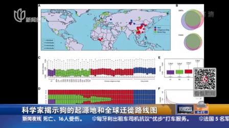 科学家揭示狗的起源地和全球迁徙路线图:33000年前开始在东亚南部被驯化  逐渐迁徙扩散到全世界 新闻夜线 160119