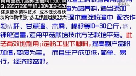 木��淀粉渣生料栽培食用菌平菇栽培技�c016-1-21 20-24-18食用菌shiyongjun