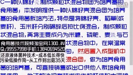 一种以棉籽�又瞥煽帕W椿旌衔锿盼�培养基的食用菌2016-1-22 19-28-02食用菌shiyongjun