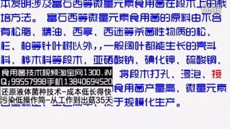 富石西等微量元素食用菌的段木栽培方法-专利技�c006-1-26 19-52-55食用菌shiyongjun