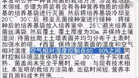 食用菌的裁培方法,出菇时间矿营养丰富且原料成本低廉_专利技�c016-2-3 15-12-13食用菌shiyongjun