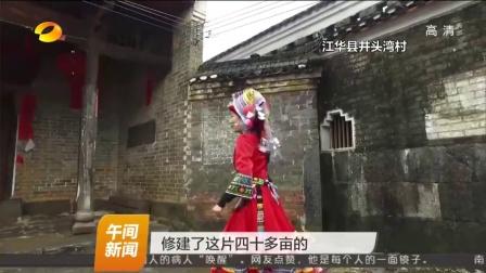 直播香草源:江华的美丽村庄 午间新闻 160205