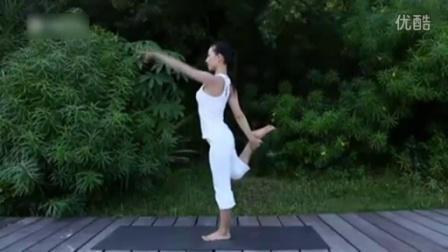瑜伽初级教程在家练全套瘦腰瘦肚子步骤v瑜伽瑜湖北省国家税务局操作申报瘦腿图片