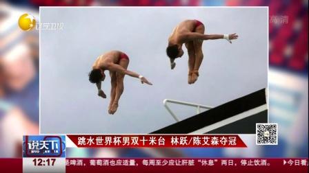 跳水世界杯男双十米台  林跃/陈艾森夺冠 说...