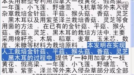 利用外来入侵杂草栽培食用菌的方法,成本低且有事益于工厂化生亿,食用菌shiyongjun